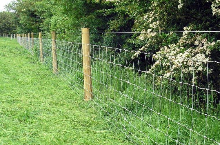 Barbed and Barbless Wire Fence - Spokane Contractor Installation